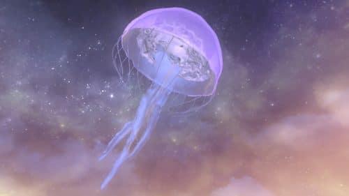 N.E.R.O. Medusa